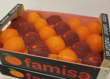 Pers Sinaasappels 15kg €14,99